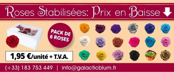 Roses stabilisees